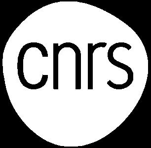 Logo CNRS Blanc