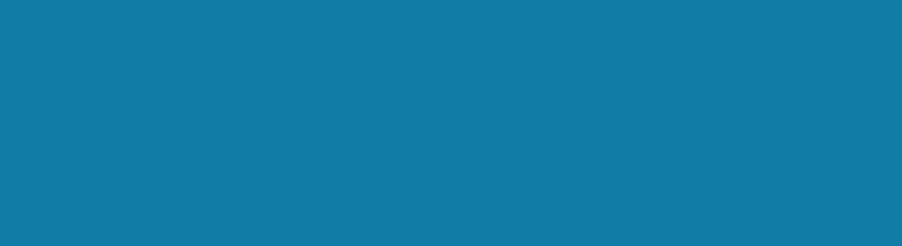 INPHYNI - Logo bleu