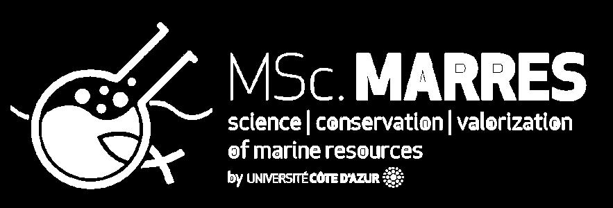 Logo Marres Education - Blanc horizontal - EN